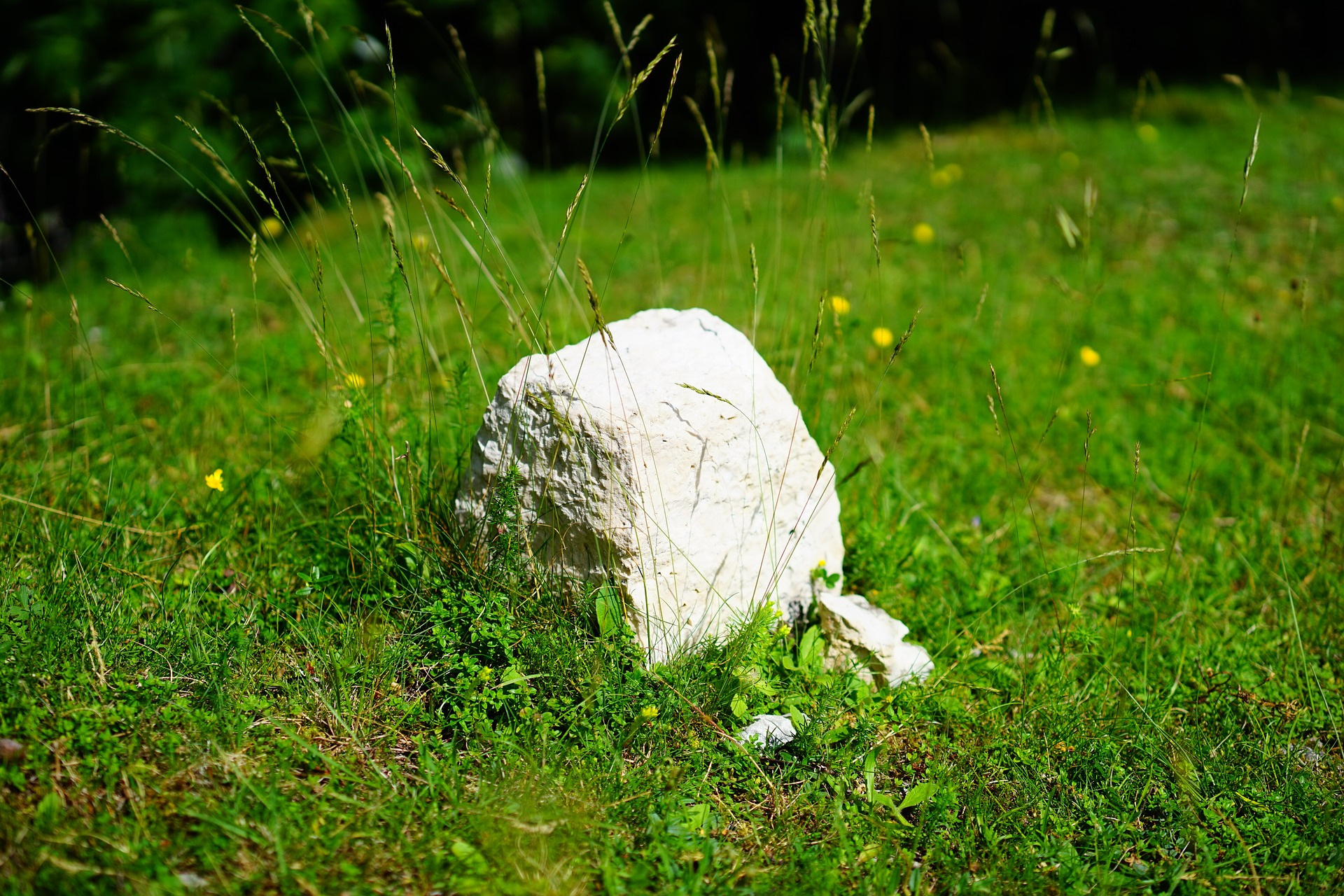 photograph of a mile stone marker